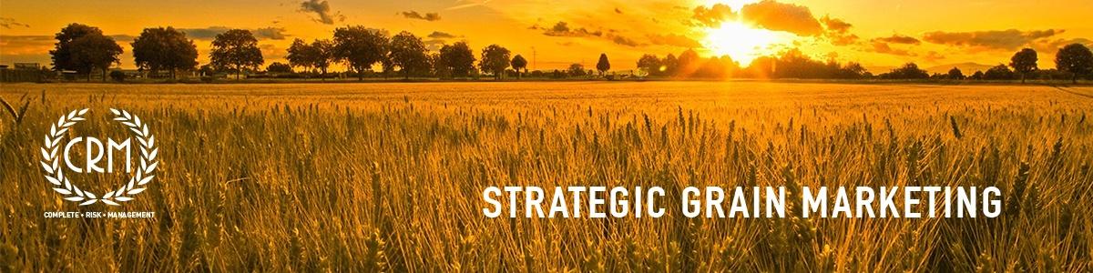 StrategicGrainMarketing